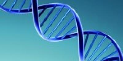 Laurea in Biotecnologie